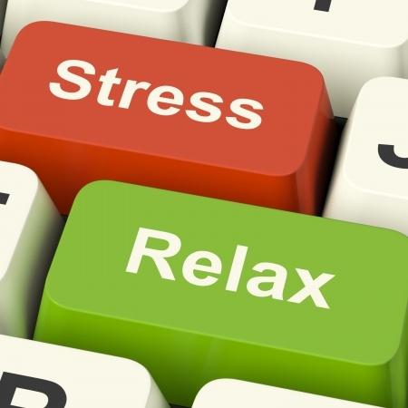 stress_relax_s copia