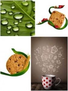 foto_collage_biscotti vapore