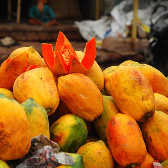 Papaya India_570